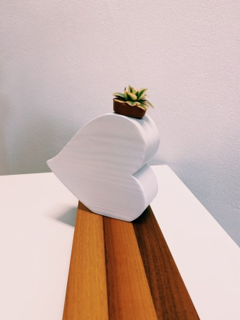 Cuore bianco portapiantina